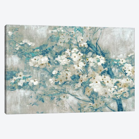 Dogwood Bloom II Canvas Print #ESK58} by Edward Selkirk Canvas Artwork