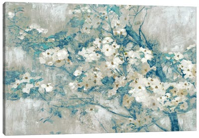 Dogwood Bloom II Canvas Art Print