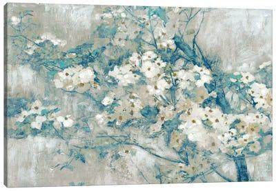 Dogwood Bloom II Canvas Art Print