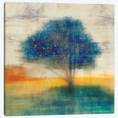 Dreamfall I Canvas Print #ESK59} by Edward Selkirk Canvas Wall Art