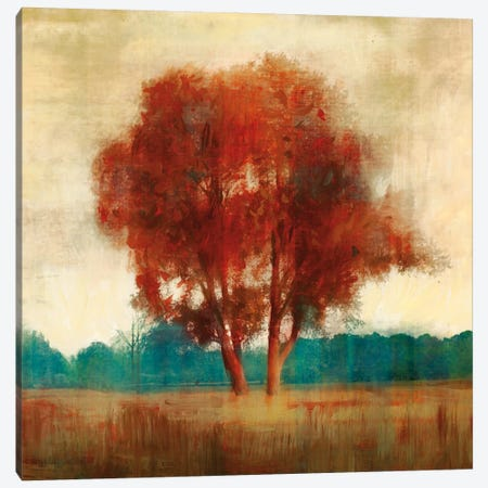 Dreamfall II Canvas Print #ESK60} by Edward Selkirk Canvas Art Print