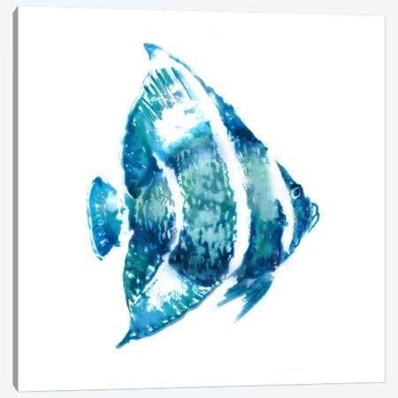 Fish I Canvas Print #ESK69} by Edward Selkirk Canvas Print