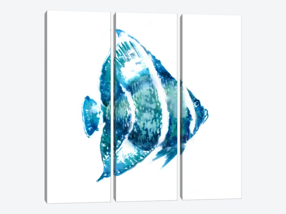 Fish I by Edward Selkirk 3-piece Canvas Wall Art