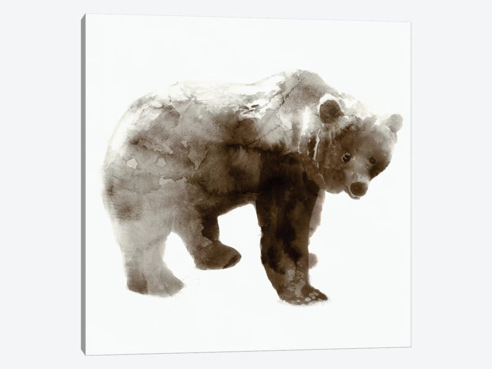 Bear I by Edward Selkirk 1-piece Canvas Art Print