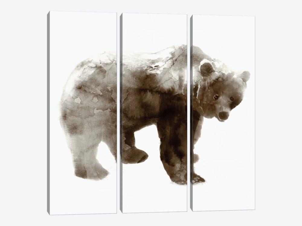 Bear I by Edward Selkirk 3-piece Canvas Art Print
