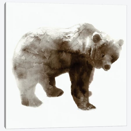Bear I Canvas Print #ESK6} by Edward Selkirk Canvas Wall Art