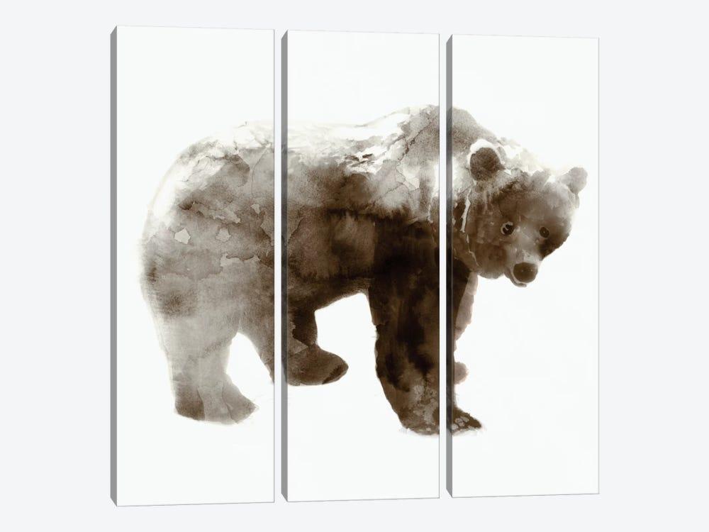 Bear I by Edward Selkirk 3-piece Canvas Art Print