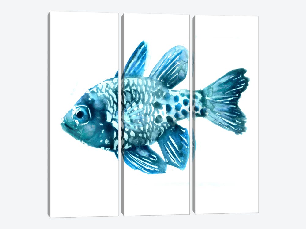 Fish II by Edward Selkirk 3-piece Canvas Art