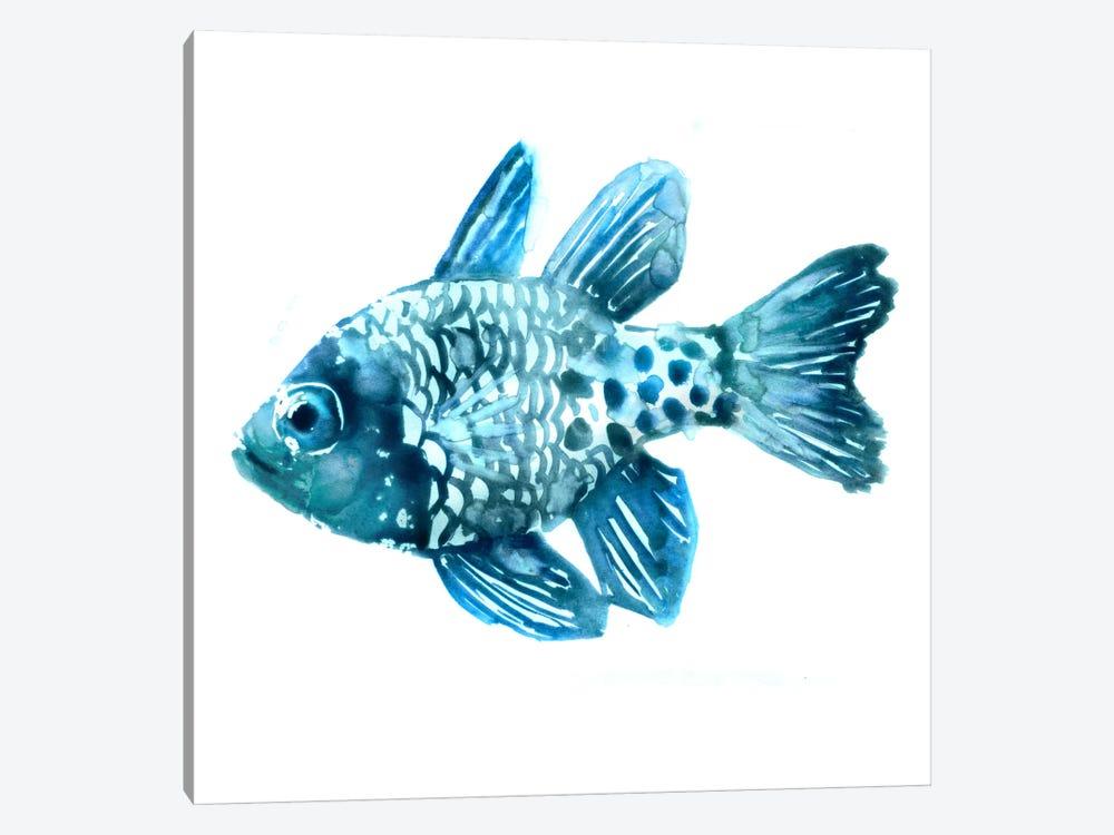 Fish II by Edward Selkirk 1-piece Canvas Artwork