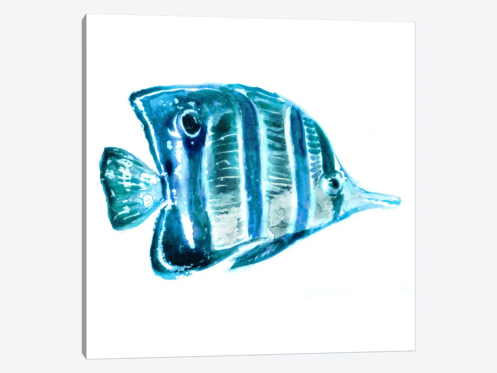 Fish III by Edward Selkirk 1-piece Canvas Print