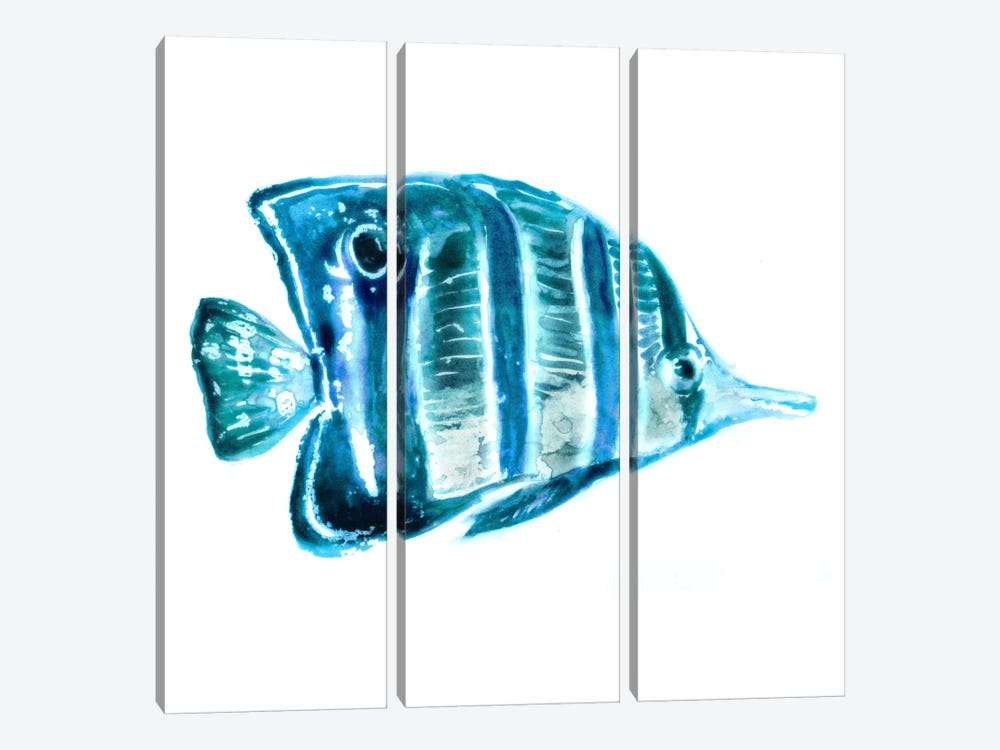Fish III by Edward Selkirk 3-piece Art Print