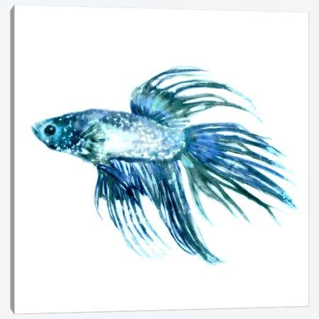 Fish IV Canvas Print #ESK72} by Edward Selkirk Canvas Art