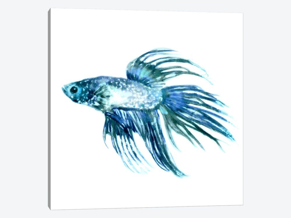 Fish IV by Edward Selkirk 1-piece Canvas Artwork