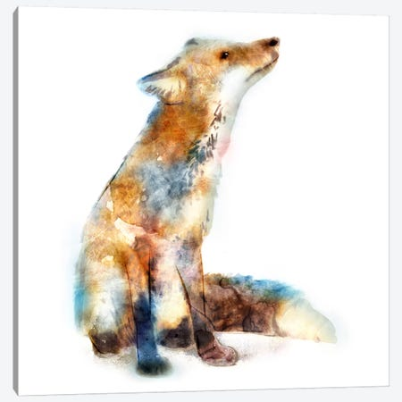 Fox Canvas Print #ESK73} by Edward Selkirk Canvas Wall Art