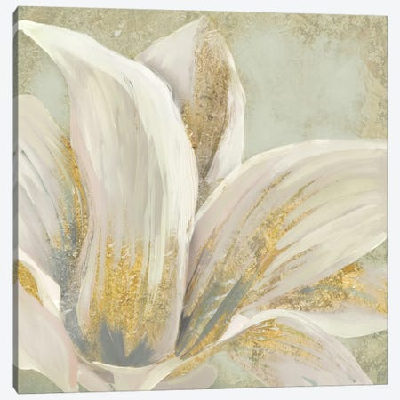 Fresh Bloom I Canvas Print #ESK74} by Edward Selkirk Canvas Print