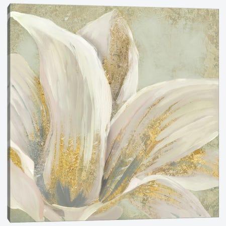 Fresh Bloom I Canvas Print #ESK74} by Edward Selkirk Canvas Print