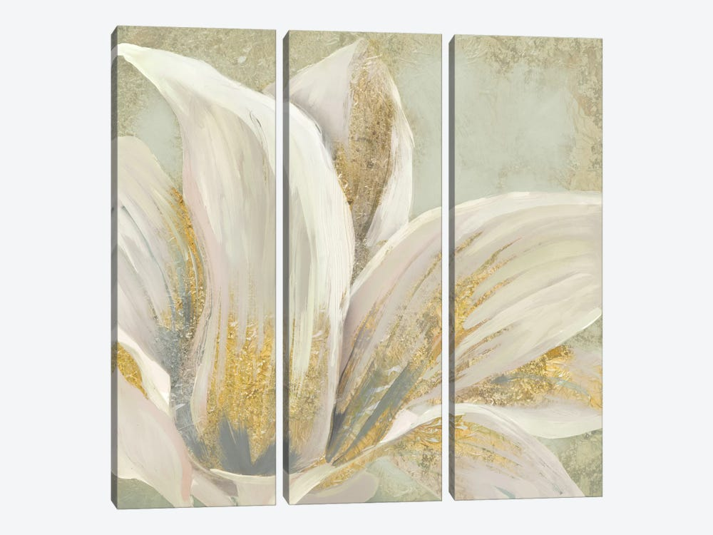 Fresh Bloom I by Edward Selkirk 3-piece Canvas Wall Art