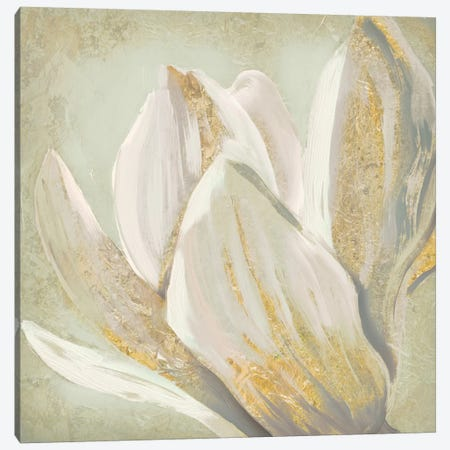 Fresh Bloom II Canvas Print #ESK75} by Edward Selkirk Art Print