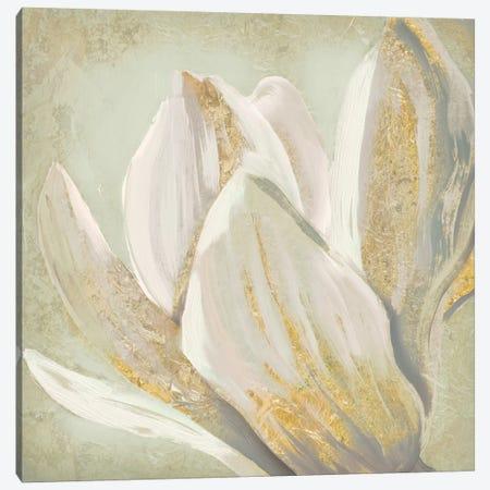Fresh Bloom II Canvas Print #ESK75} by Edward Selkirk Art Print