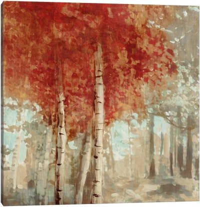 Frontier I Canvas Art Print