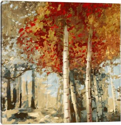 Frontier II Canvas Art Print