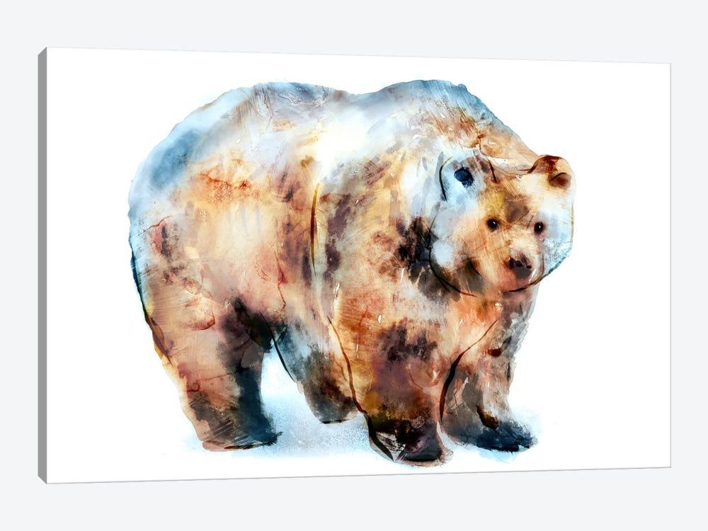 Bear II by Edward Selkirk 1-piece Canvas Artwork