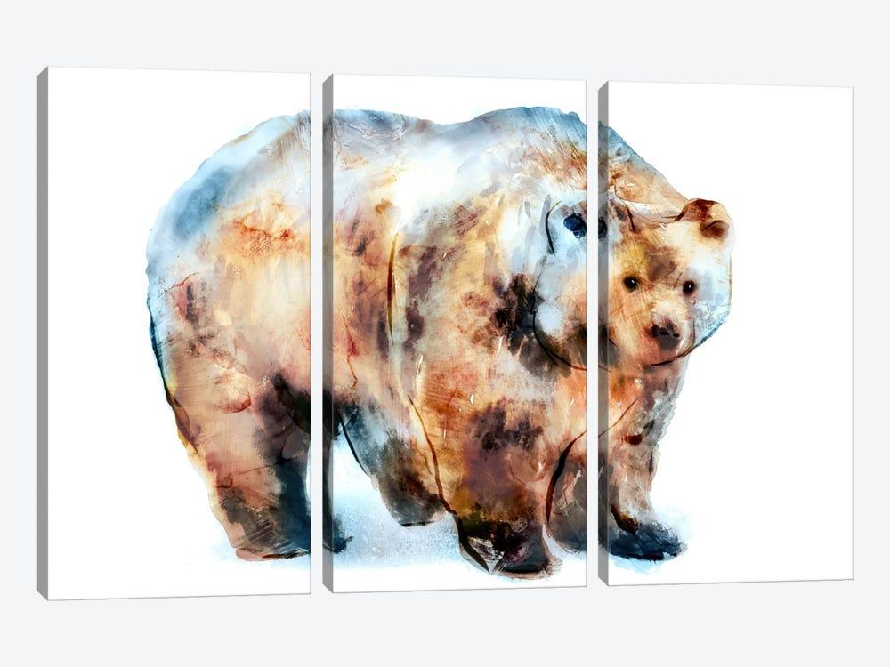 Bear II by Edward Selkirk 3-piece Canvas Wall Art
