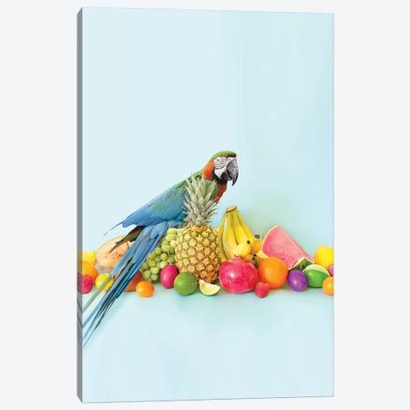 Parrot Portrait Canvas Print #ESM36} by Erin Summer Canvas Art Print