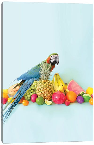 Parrot Portrait Canvas Art Print