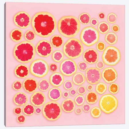 Pink Slices Canvas Print #ESM39} by Erin Summer Canvas Wall Art