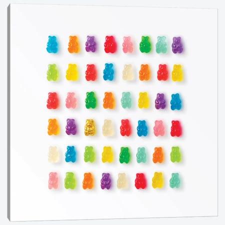 Rainbow Bears Canvas Print #ESM40} by Erin Summer Art Print