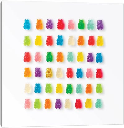 Rainbow Bears Canvas Art Print