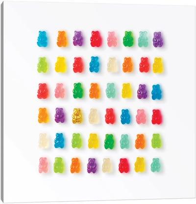 Rainbow Bears Canvas Art Print