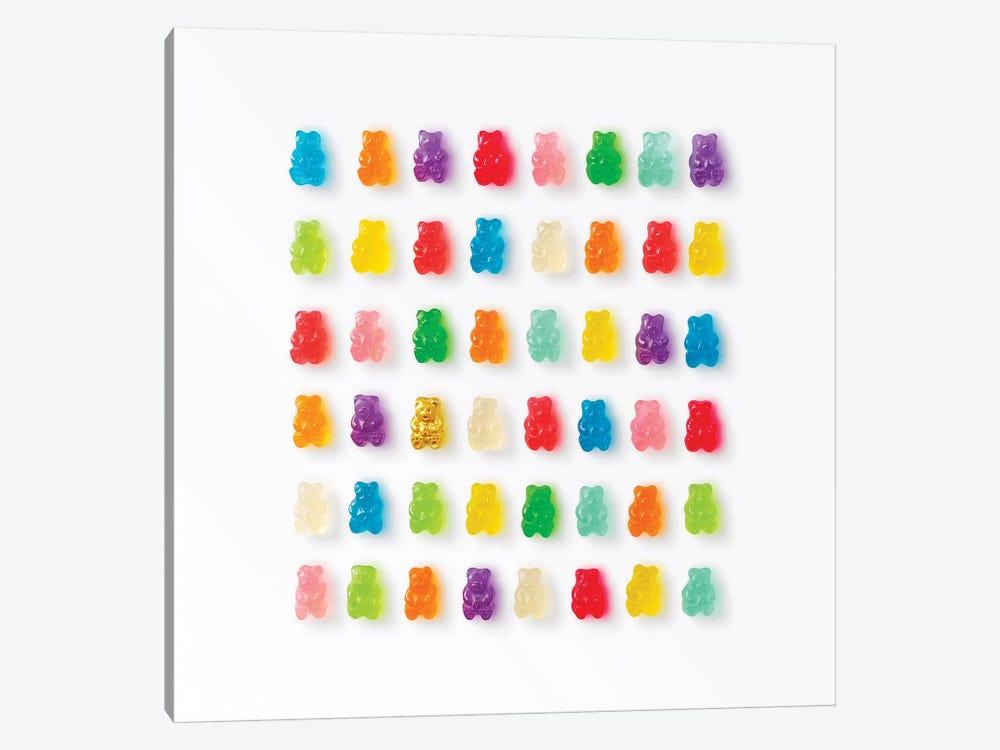 Rainbow Bears by Erin Summer 1-piece Canvas Art Print