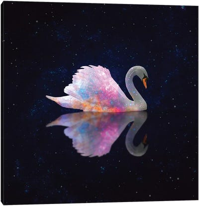 Swan Galaxy Canvas Art Print