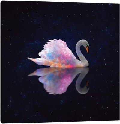 Swan Galaxy Canvas Art Print