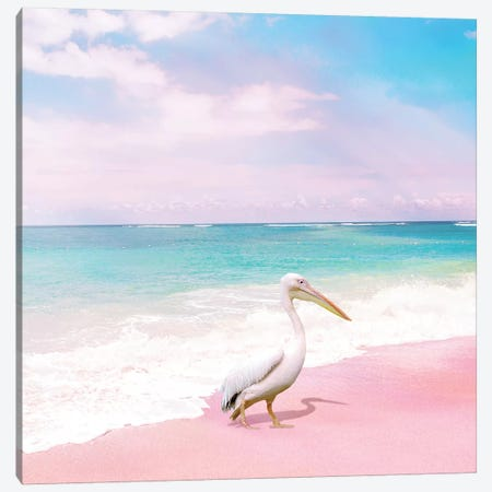Pelican Bay Canvas Print #ESM54} by Erin Summer Art Print