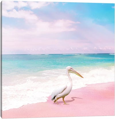Pelican Bay Canvas Art Print