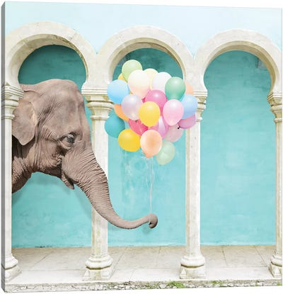 An Elephant Never Forgets Canvas Art Print