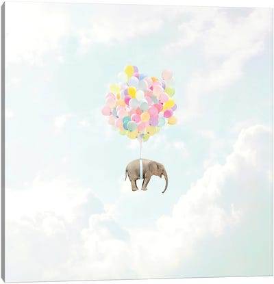 Lift Off! Canvas Art Print