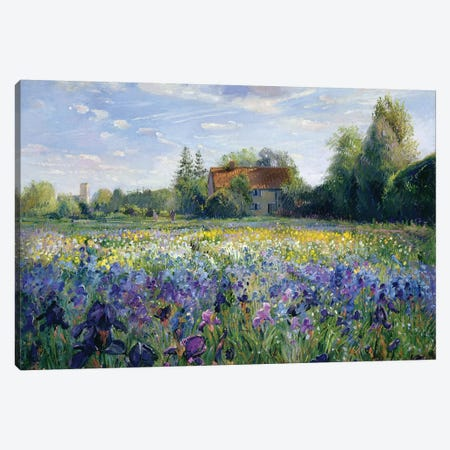 Evening At The Iris Field 3-Piece Canvas #EST10} by Timothy Easton Canvas Art Print