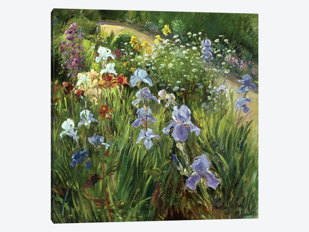 Irises And Oxeye Daisies by Timothy Easton 1-piece Canvas Print