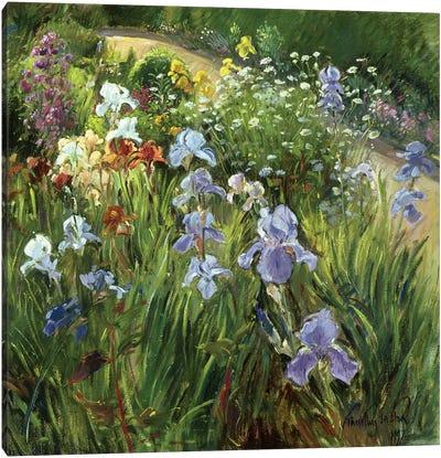 Irises And Oxeye Daisies Canvas Art Print