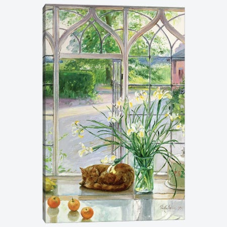 Irises And Sleeping Cat Canvas Print #EST13} by Timothy Easton Canvas Art Print