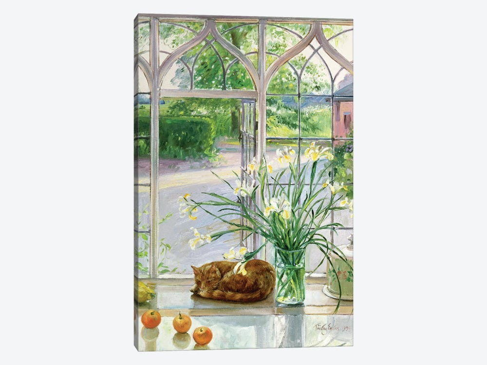 Irises And Sleeping Cat by Timothy Easton 1-piece Canvas Wall Art