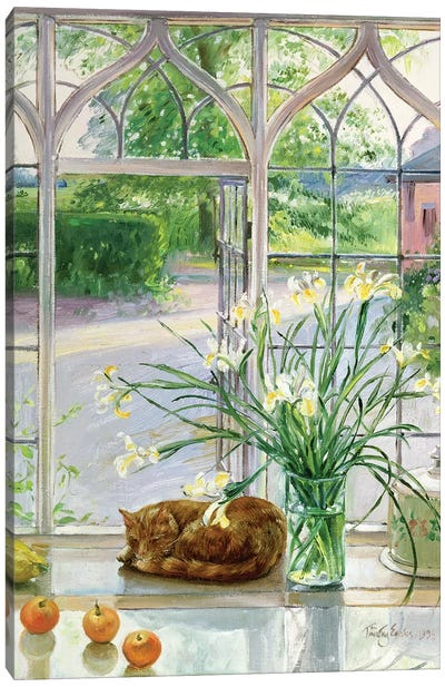 Irises And Sleeping Cat Canvas Art Print