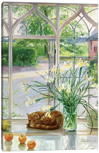 Irises And Sleeping Cat, 1990 Canvas Art Print