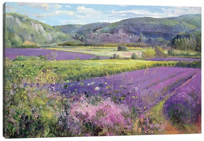 Lavender Fields In Old Provence Canvas Art Print