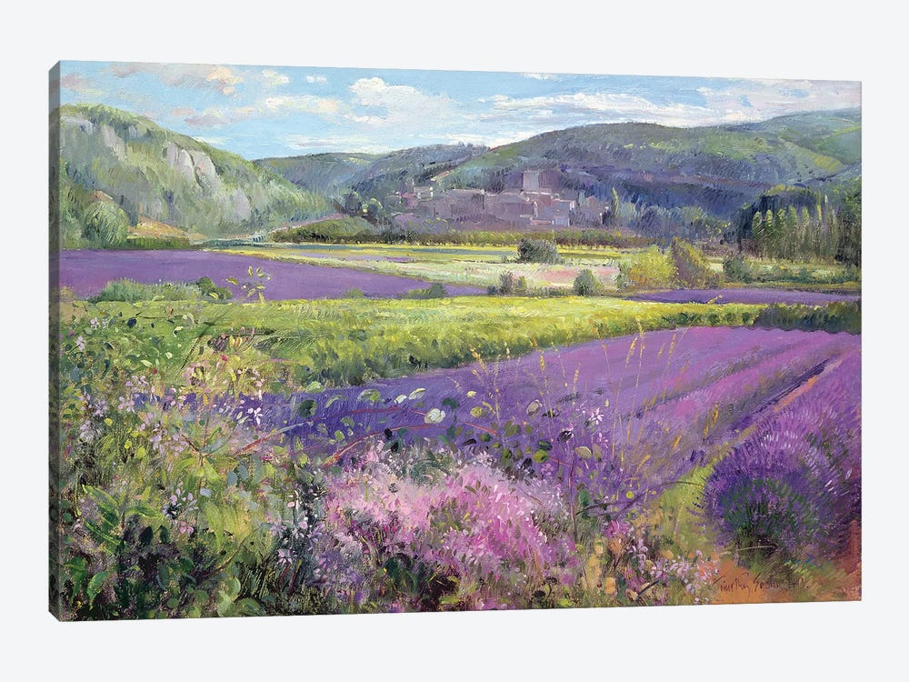 Lavender Fields In Old Provence by Timothy Easton 1-piece Art Print
