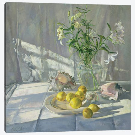 Reflections And Shadows Canvas Print #EST18} by Timothy Easton Art Print